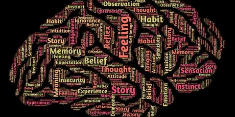 Pictured: positive mental health word cloud in shape of brain
